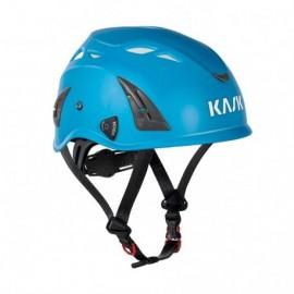 Pruning Helmet