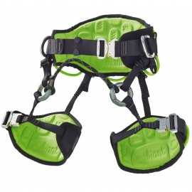 HARNESS FOR PRUNER