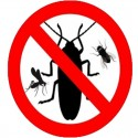 ANTI-INSECT DEVICES